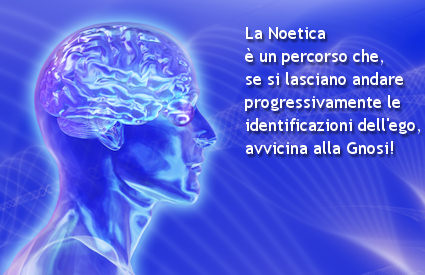 cartesio noetica