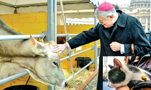 Guido Pozzo sant antonio abate saint peter 17 January 2014