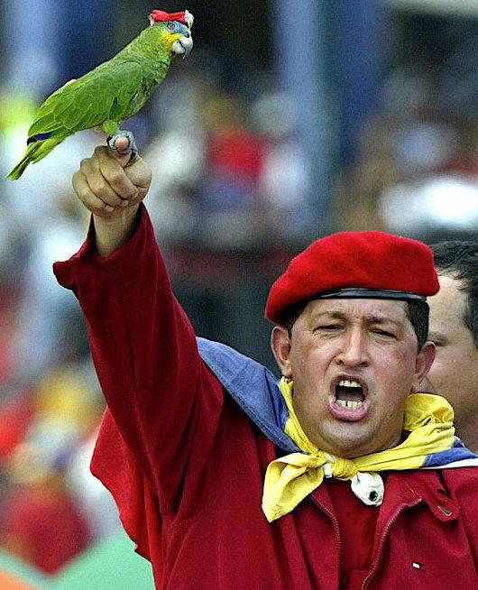 Hugo Chavez e il pappagallo